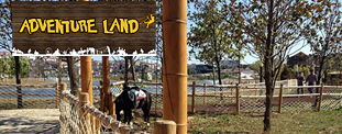 Vialand Adventure Land'de Pony Binişi